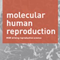Потенциальное влияние COVID-19/АПФ2 на женскую репродуктивную систему