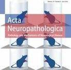Невропатология COVID-19: спектр сосудистой патологии и патологии по типу острого рассеянного энцефаломиелита (ОРЭМ)